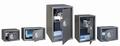 Phoenix Meubelkluis VELA Home/Office SS0803E inhoud 34 liter